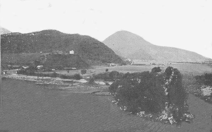 Oued-Marsa - des vignobles RB051gf