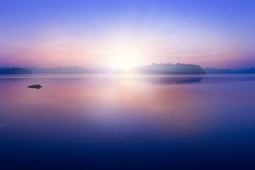 Méditation : les joies et la joie ! 3405492504