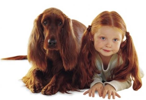 [Jeu] Association d'images - Page 6 Laquelle-a-les-plus-longs-cheveux_279_w560