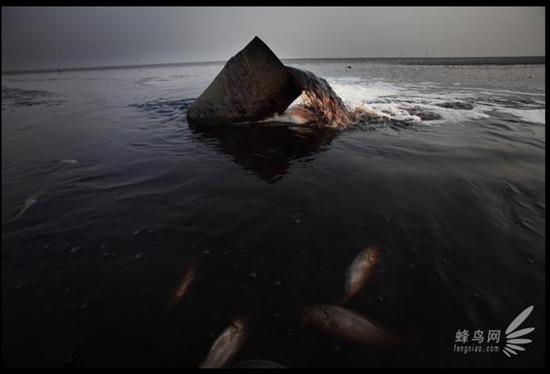 """Bộ ảnh """"Tình trạng ô nhiễm môi trường"""" tại Trung Quốc 20091020luguang08"""