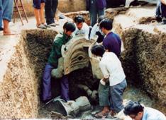 À la recherche des racines de Sanxingdui P11n2