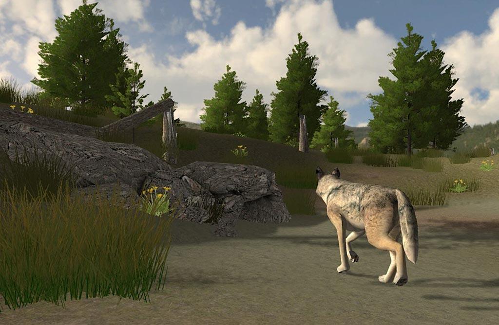 WolfQuest-ein wirklich tolles Spiel ;) 70267c93beab6f84
