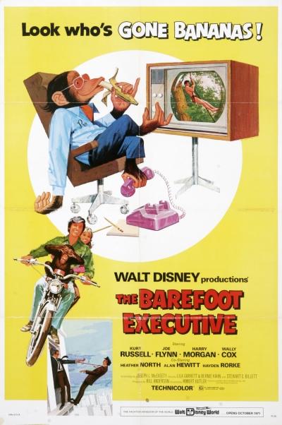 La VOD DISNEY vu par TF1 Vision 1971-directeur-1