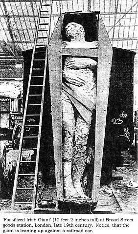 Загадочная фотография гигантской мумии K-tfmger1sc