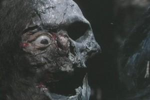Critiques de films de zombies/contaminés - Page 13 Oasiszombie2
