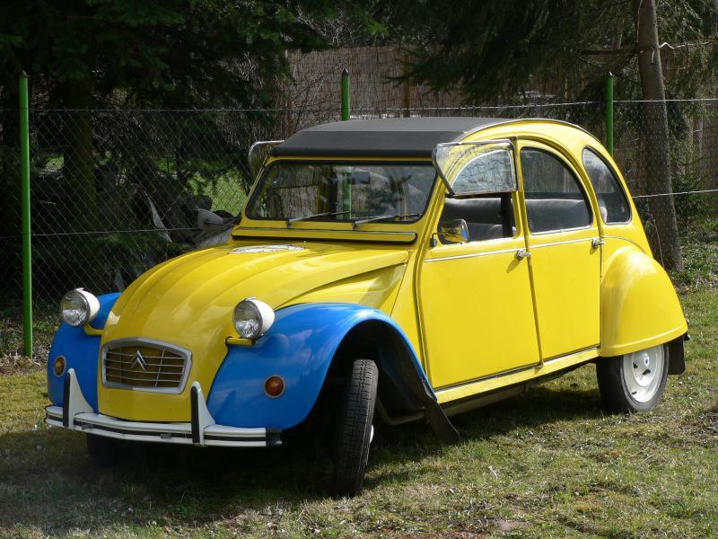 Les autos 1/1 de BaRT 1245_376_5
