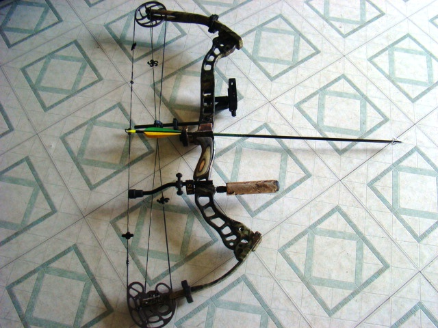Luk i strijela 27310d1221496353-recommendations-new-compound-hunting-bow-bowtech