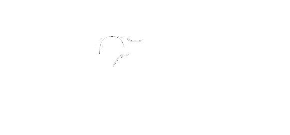 Clairs de Plûmes
