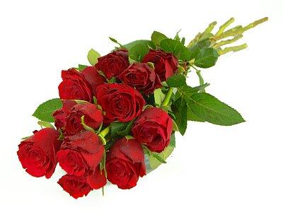 كشكول الايام على حبيبتي مين Romantic-red-roses-11