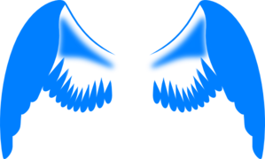 A contracorriente  Boston 02 - Noe Casado (rom) Wings-in-blue-md