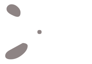 No sense at all Scissors-white-with-gray-md