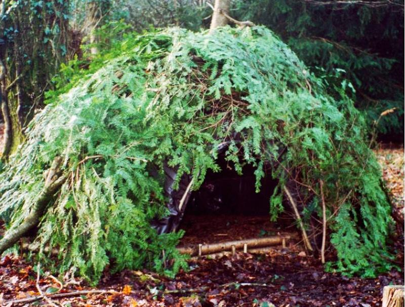 Preživljavanje u prirodi - Page 2 Shelter