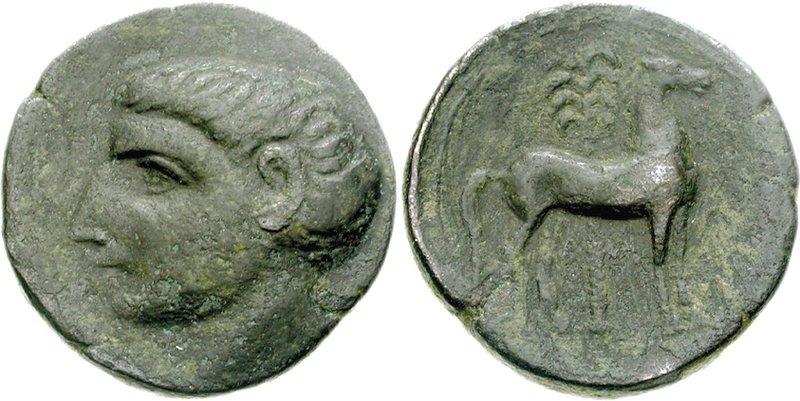 SIN IDENTIFICAR: ¿Ibérica, Cartaginesa? 101-hispcart73000685
