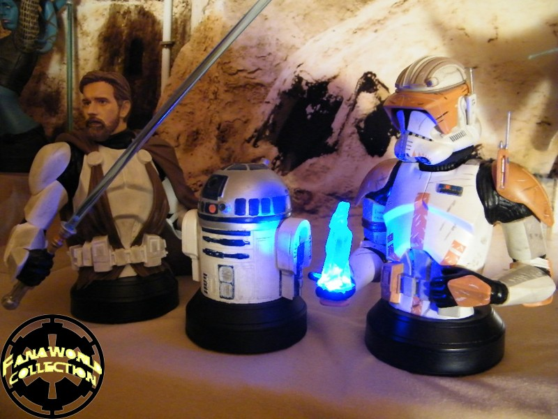 Gentle Giant - Sebulba and Anakin 2-pack Mini Busts  - Page 2 Fanaworld_15076_cc0ec623a3a23790c2b81570af0bd035