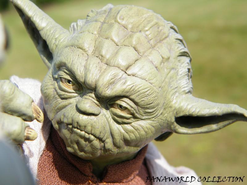 Yoda and Clone Trooper Premium format ! - Page 4 Fanaworld_19781_9889da1cd3d1fdd46828597683715405