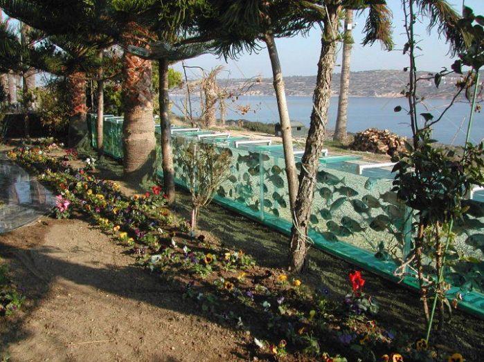 Turska Cesme-aquarium-fence5