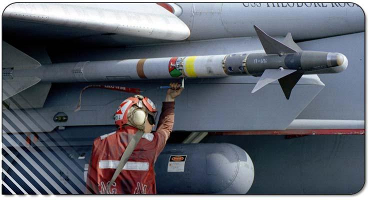 que misiles posee la fam Aim-9_wide