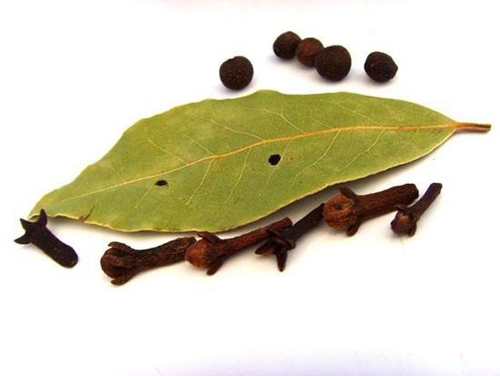 Chasser les mouches : 10 astuces naturelles Girofle-contre-mouches