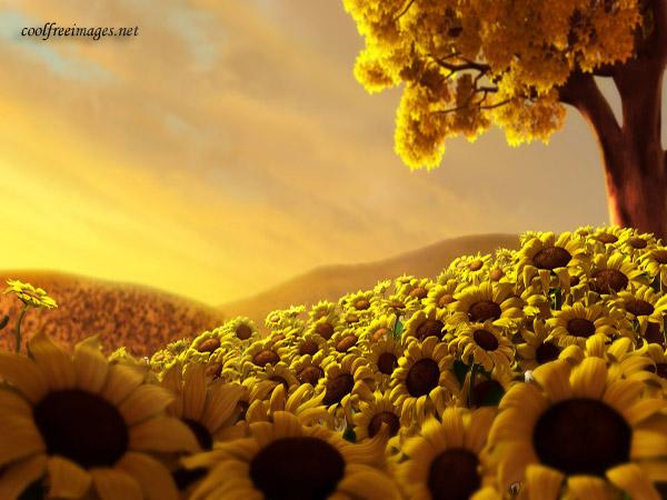 8 MARTIE CU DRAG Flowers_30