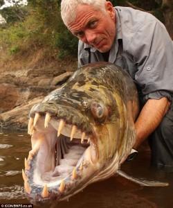 Ме бендисва - Page 9 Peces-gigantes-fish-250x300