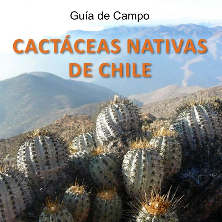 Hablando de Cactus - Portal 3.Gu%c3%ada-de-Campo.-Cact%c3%a1ceas-nativas-de-Chile-768x768