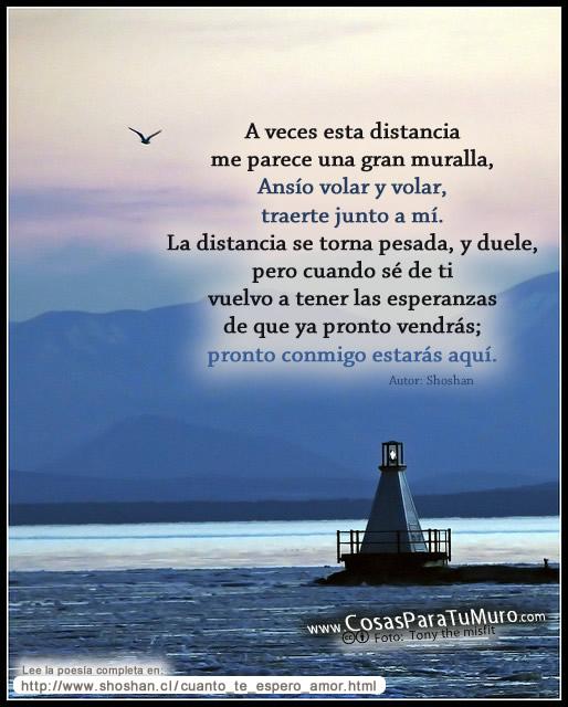 SOLO COSITAS QUE LEO - Página 32 Amor_en_la_distancia-other