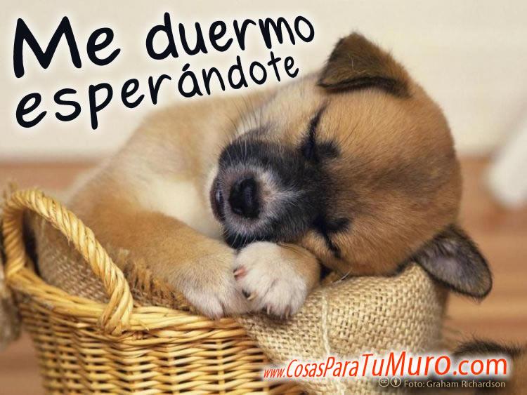 Me duermo... Me_duermo_esperandote-normal