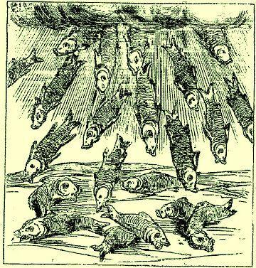 """""""Le Livre des prodiges"""" Conrad Lycosthène 1557 M21238c"""