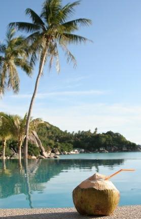 """OT: """"Off-Topic Island"""" Agua-de-pipa-costa-rica"""