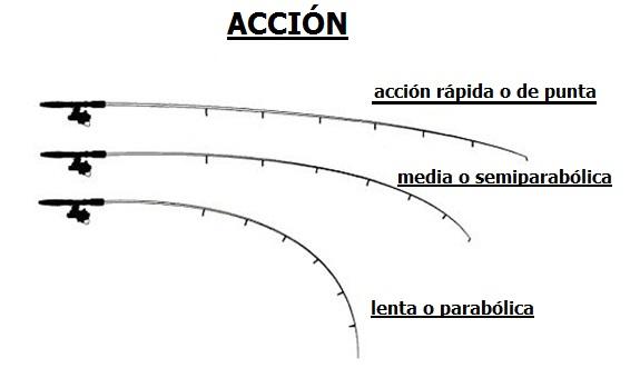 4 claves para elegir nuestra caña de spinning Ca%C3%B1as-de-spinning-acci%C3%B3n
