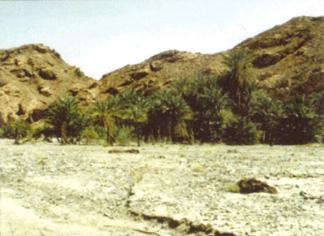 Arheoloski ponalasci kod planine Sinaj.    Sinaj02