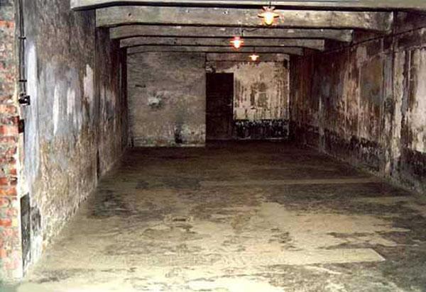Littérature concentrationnaire Image09