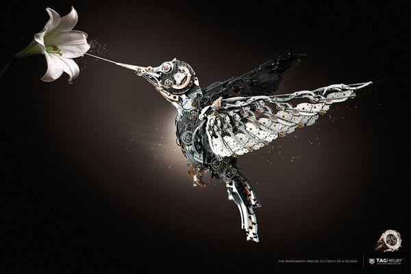 Anuncios Tag-Heuer-bird-publicidad_thumb