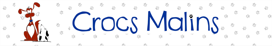 Crocs Malins