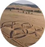Crops Circles Agosto/2014 Dornbergy