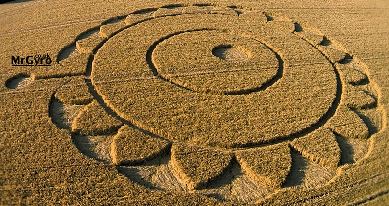 NEW FLOWER OF LIFE UK Crop Circle 15 JULY 2014 – Rodmarton nr Cirencester 1Watermarked31