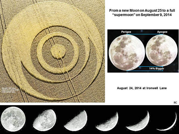 Crop Circle at Ironwell Lane, nr Stroud Green, Essex, United Kingdom. Reported 24th August  2014 Ironwell-moon1