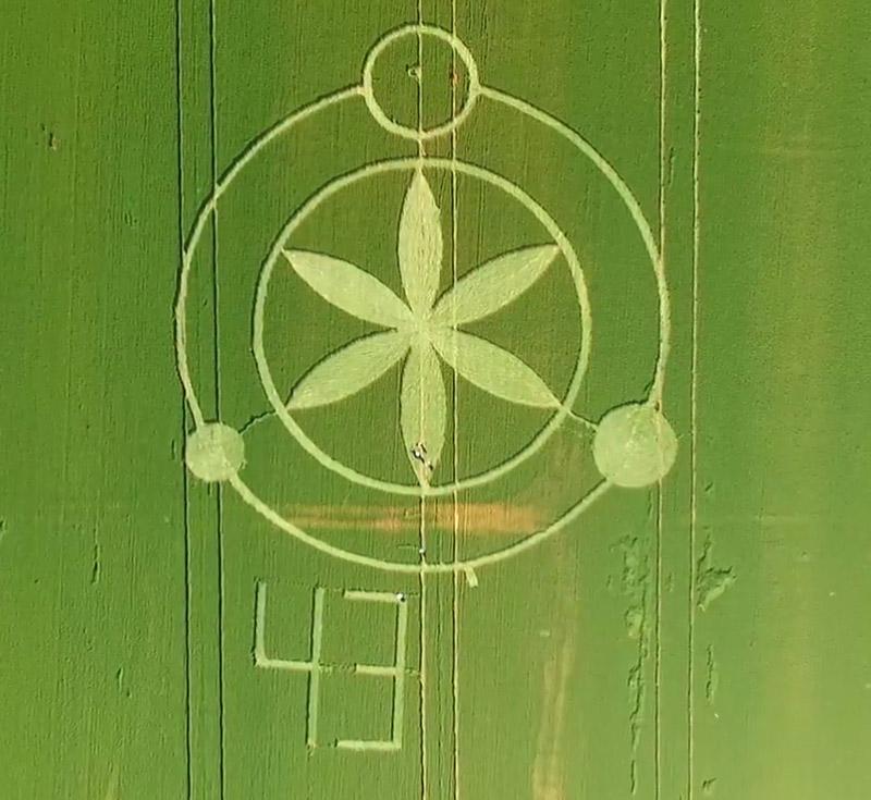 Crop circles 2016 - Página 2 Prudentopolis_Brasil