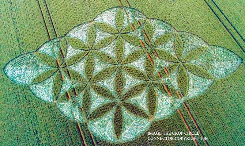 Crop circles 2016 G001bb