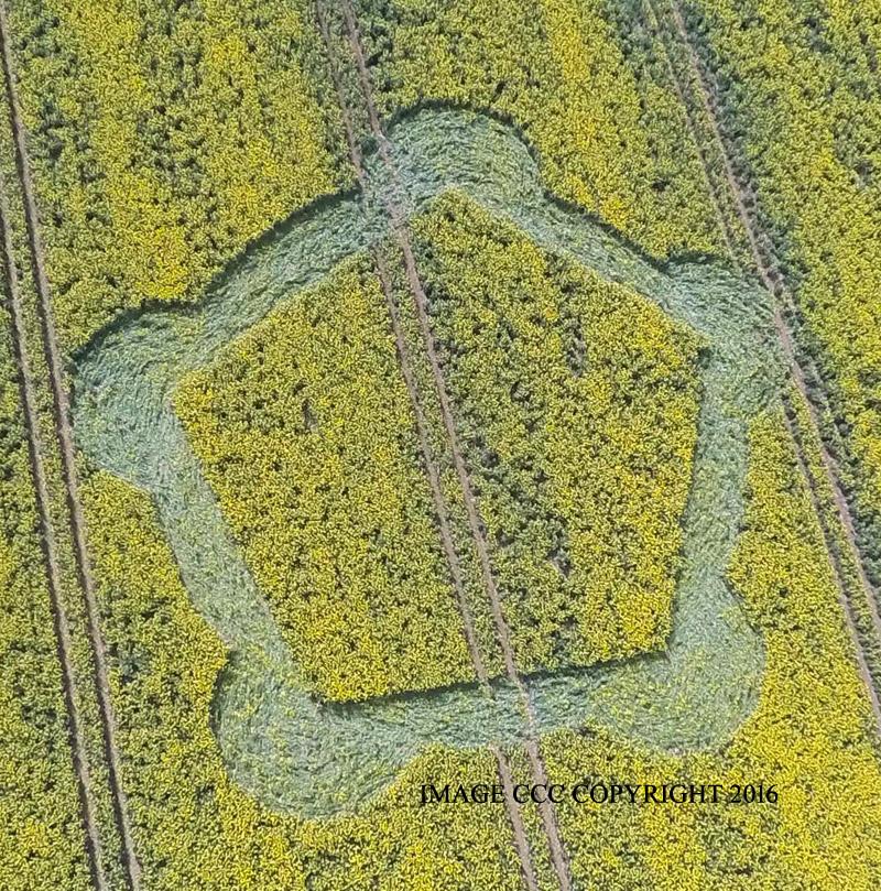 Crop circles 2016 G0011681bbb