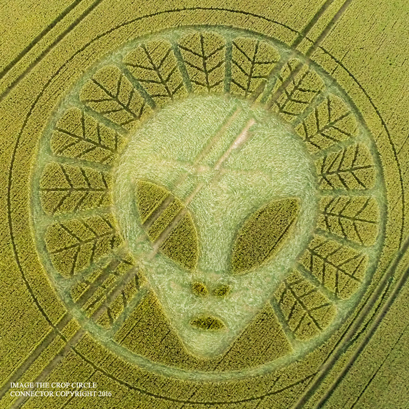 Crop circles 2016 - Página 2 G0045332KBBB1