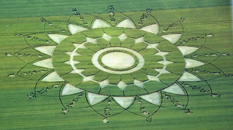 crop circles 2019 - Page 4 Piedmont-italy2