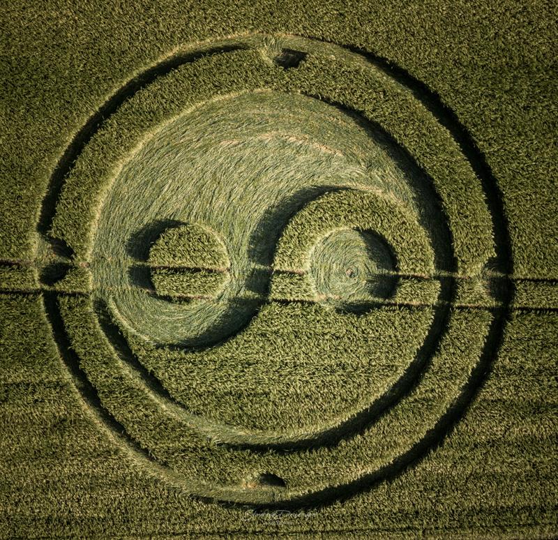 crop circles 2020 DJI_0368