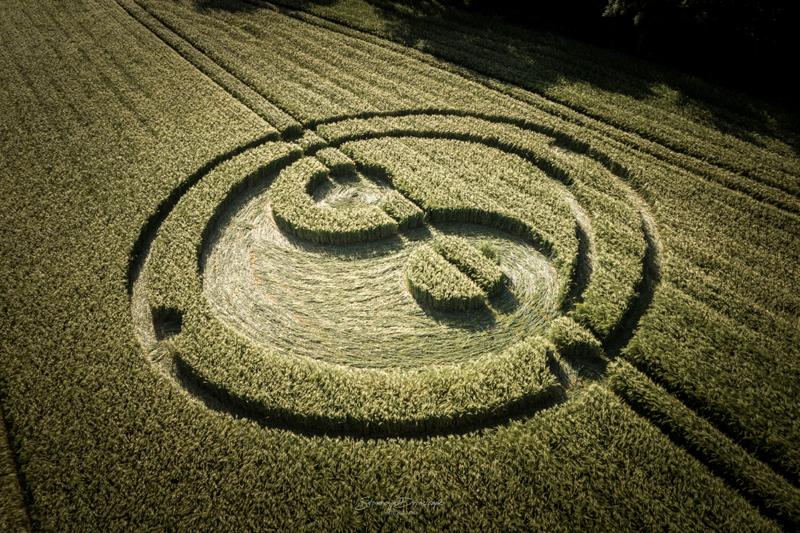 crop circles 2020 DJI_0379