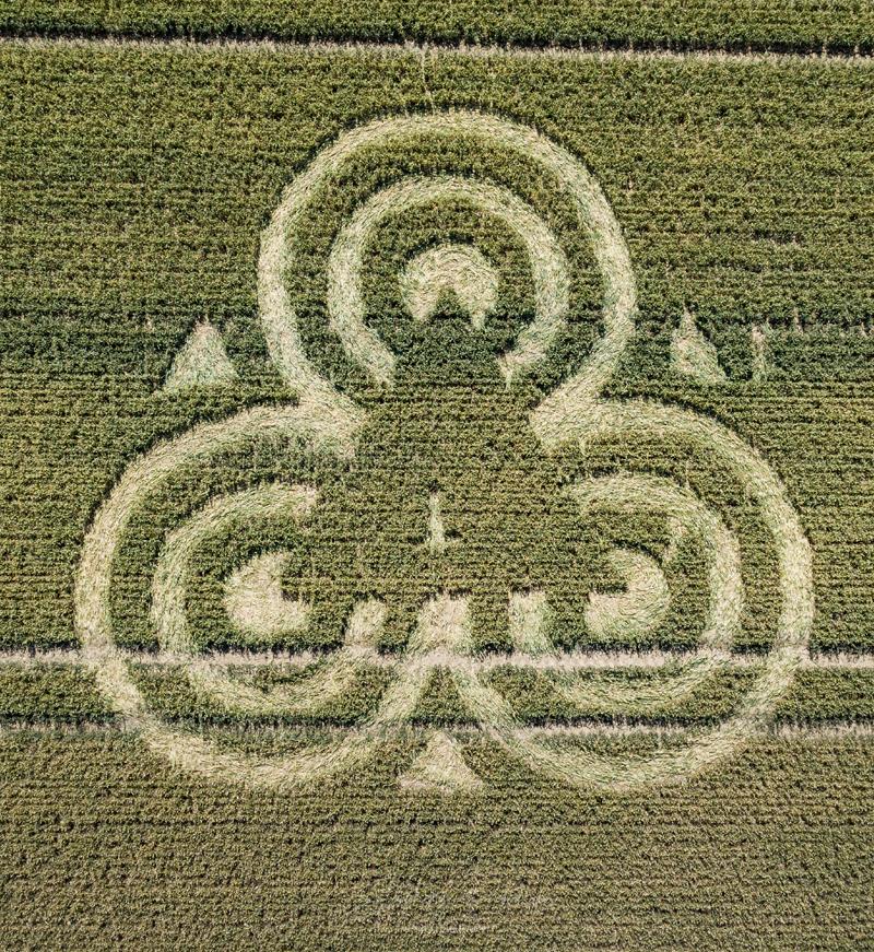 crop circles 2020 - Page 2 DJI_0573-2
