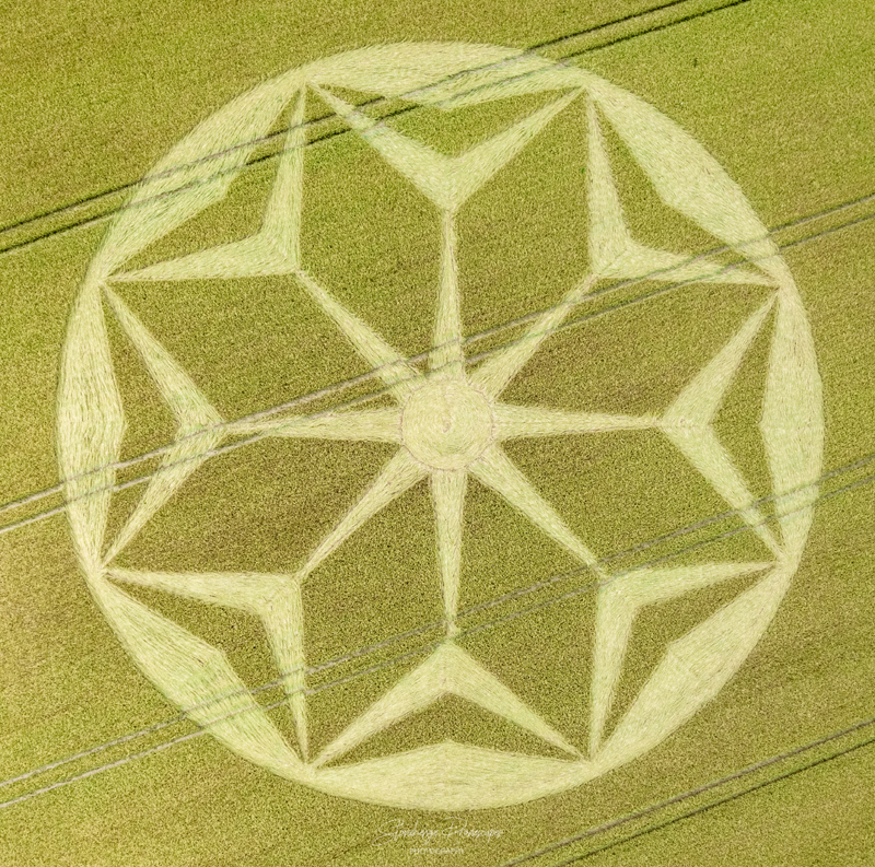 Crop Circles 2021 -  Rodfield Lane, Nr Tichborne, Hampshire. Reported 21st June DJI_0684