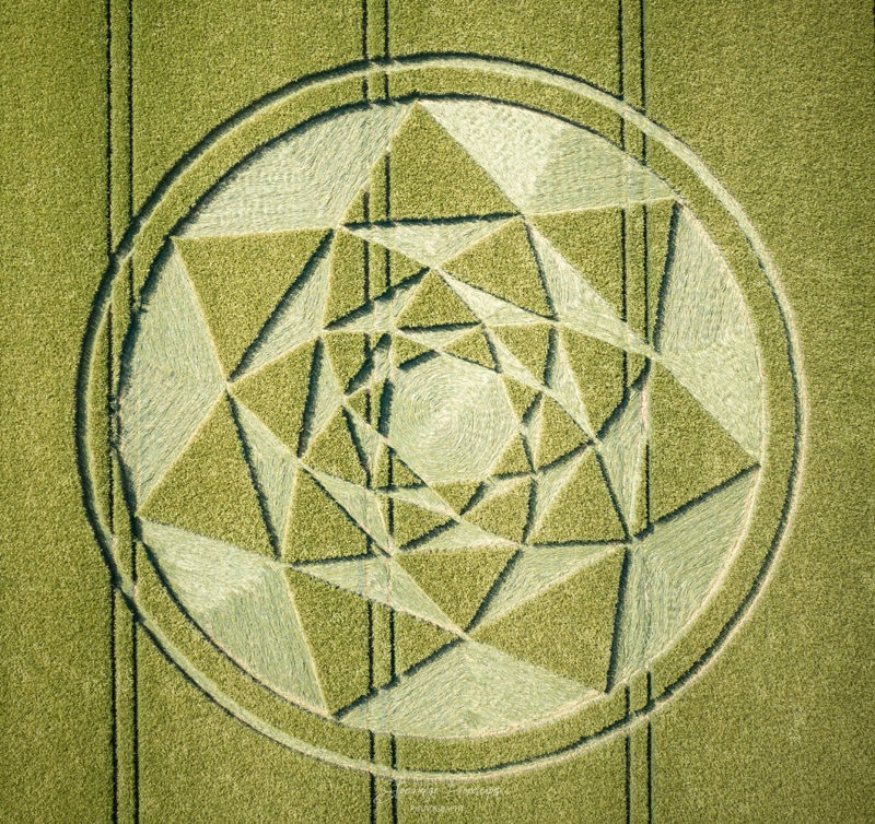 Crop Circles 2021 -  Shaw Hill, Nr Ludgershall, Wiltshire. Reported 14th June DJI_0901
