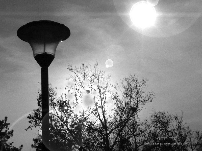 Fenjeri i lampe 009