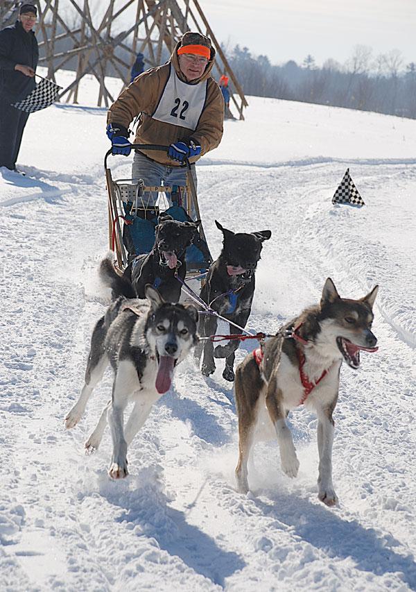Aljaska - Page 2 Dog_sled11_brian