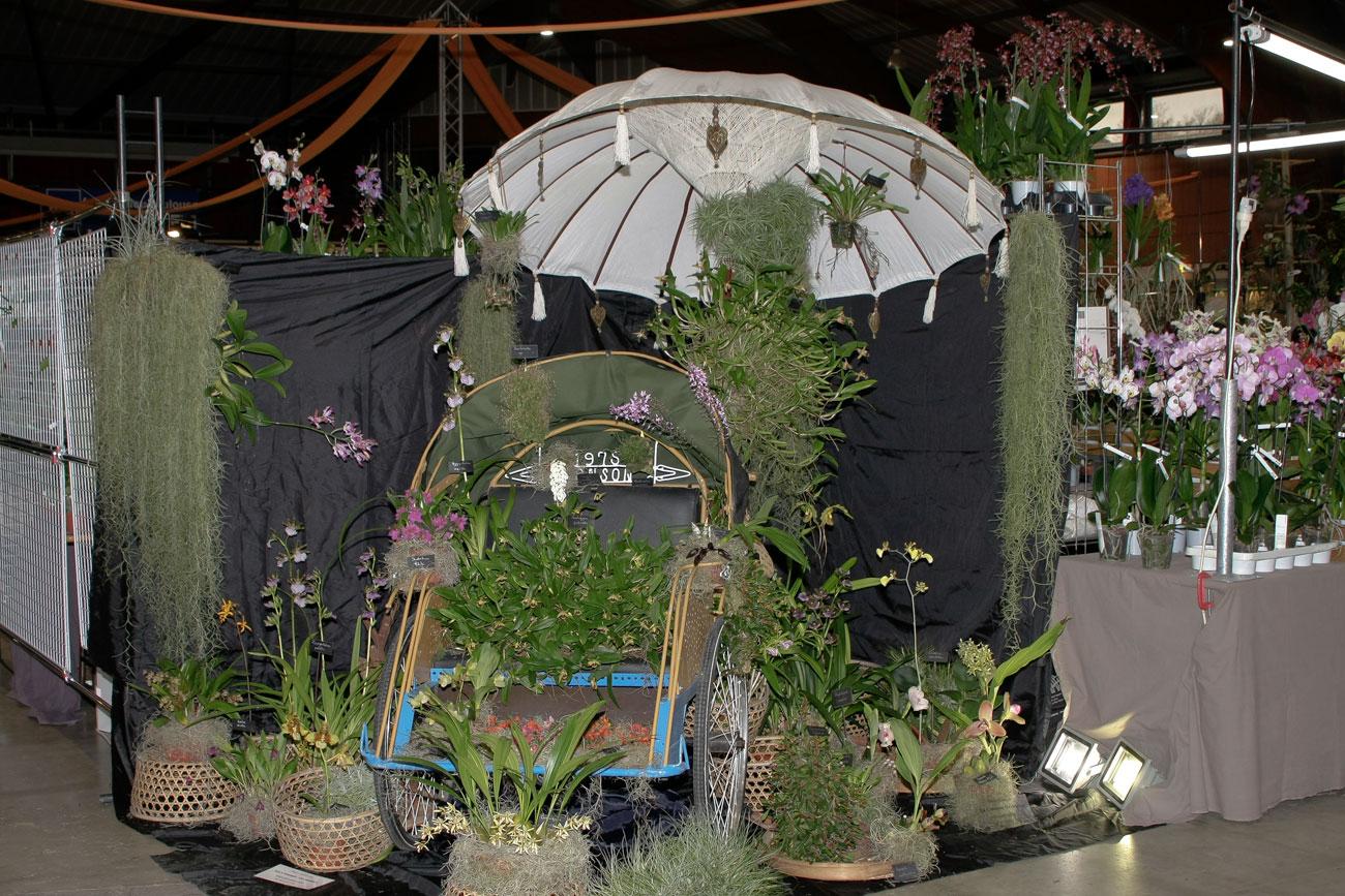 Expo-vente d'Orchidées à l'Union-Toulouse les 4,5 et 6 Novembre 2016 Expo_2016_1